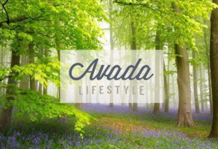 Avada Lifestyle Demo