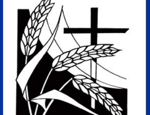 2010_4 Proclaimer Harvest 2010